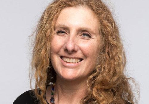Julie Lerman